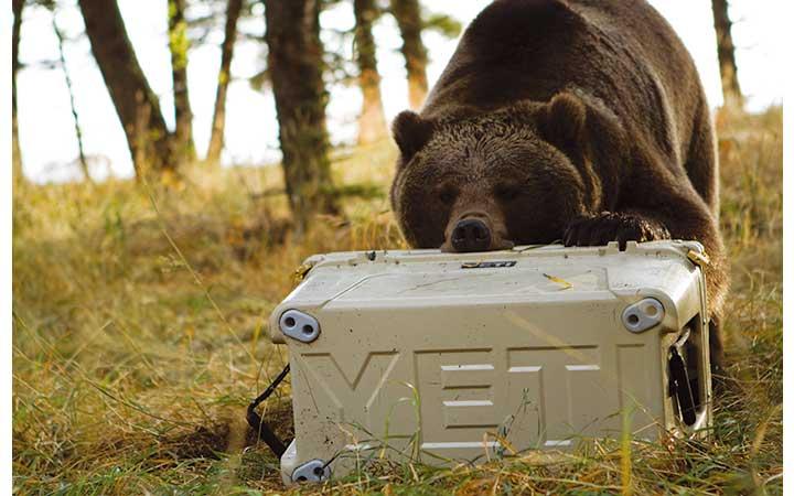 クマでも壊せないと人気のイエティのクーラーボックス