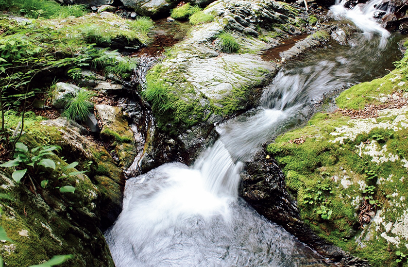 フィッシング 山奥の渓流