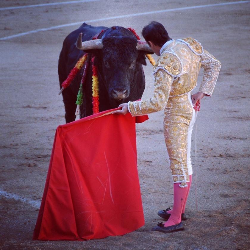 本間さん撮影写真 スペインのマドリッド