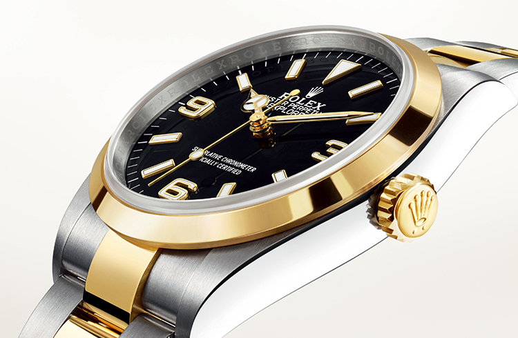 ぎょ!ギョ!魚! 海の生物に潜む腕時計のヴィンテージ用語